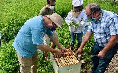 BYBA & Aspetuck Land Trust – Queen Rearing
